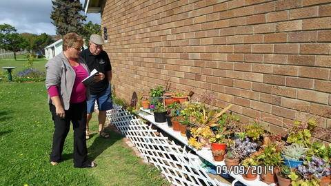 Jacky Sharp from Willow Dam Garden Centre reviewing Mnr Voss's garden.